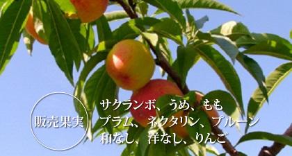 高坂果樹農園